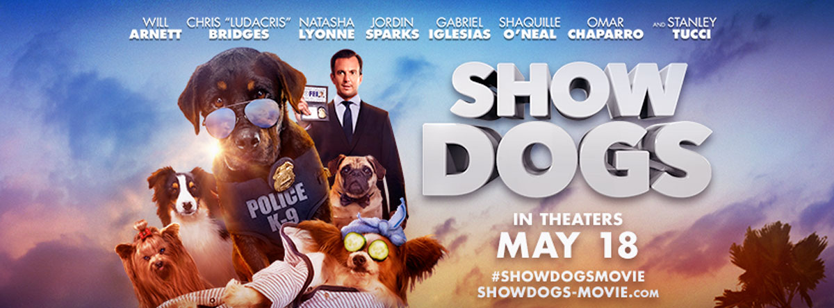 Slider Image for Show Dogs