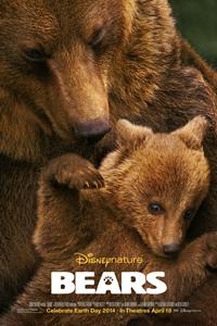 Bears_Poster