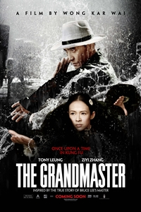 The Grandmaster (Yi dai zong shi)