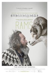 Rams (Hrutar)