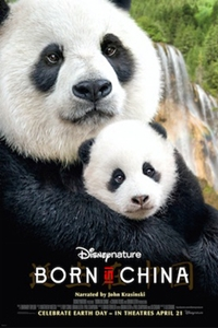 Poster for Born in China