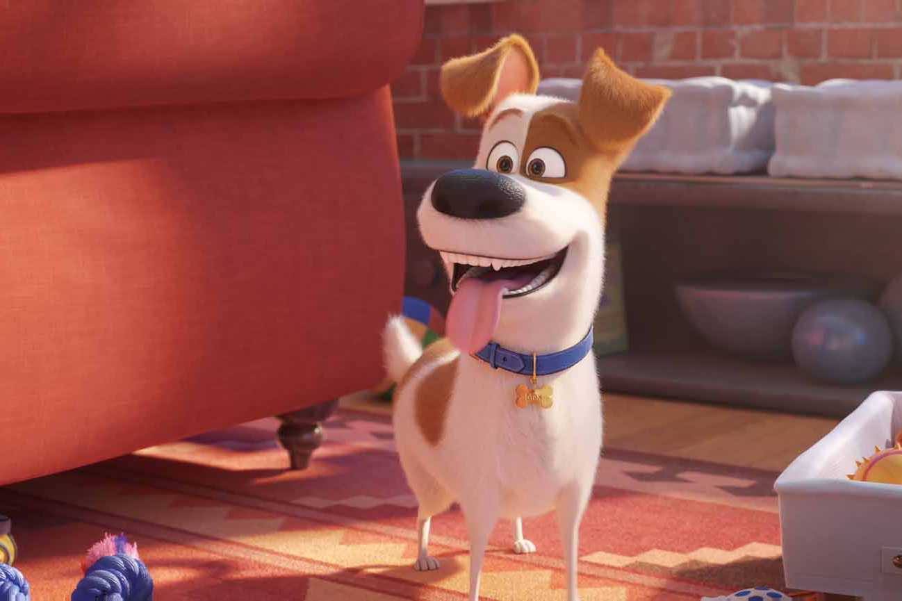 Still 5 for Secret Life of Pets 2, The