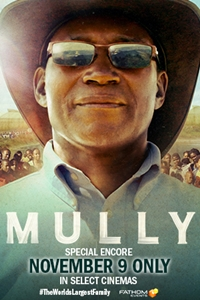 Poster of Mully