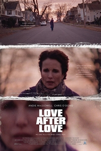 Poster of Love After Love