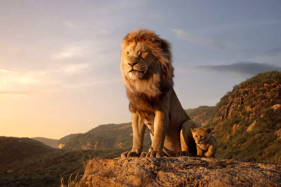 Still 7 for Lion King, The