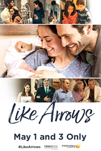 Poster of Like Arrows