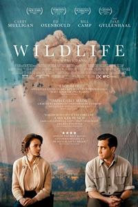 Poster of Wildlife