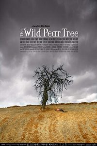 Poster of The Wild Pear Tree