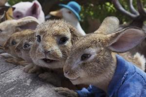 Peter Rabbit 2: The Runaway cast photo