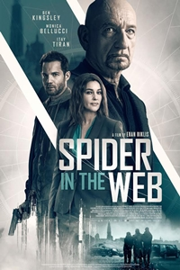 Poster of Spider in the Web