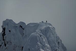 The Alpinist cast photo