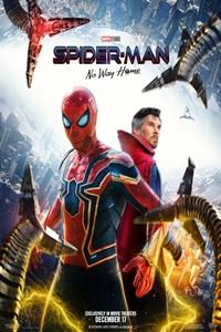 Spider-Man: No Way Home Poster