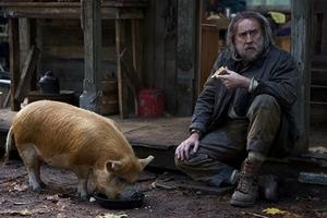 Pig cast photo