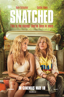 Poster of Snatched