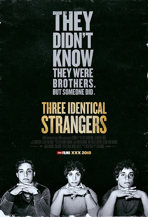 Poster of Three Identical Strangers