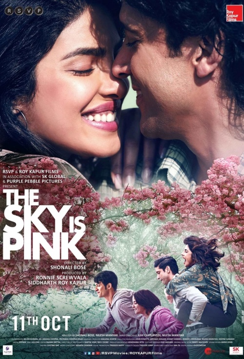 Poster of The Sky Is Pink