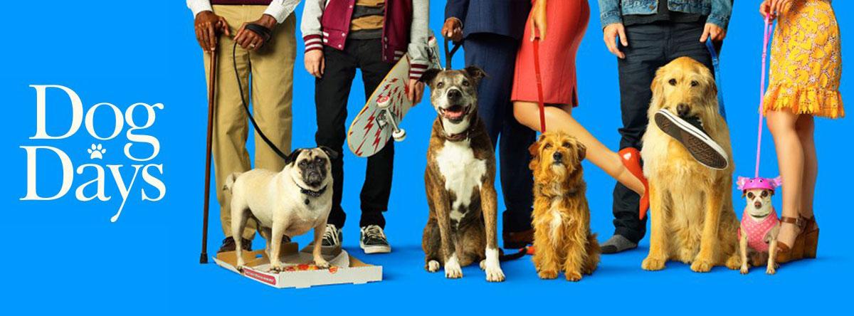Slider Image for Dog Days