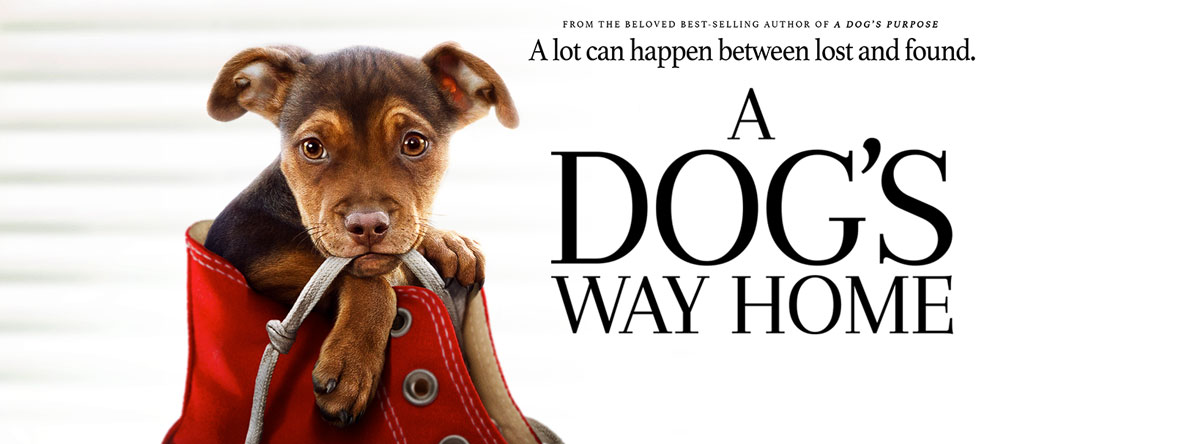 Slider Image for A Dog's Way Home