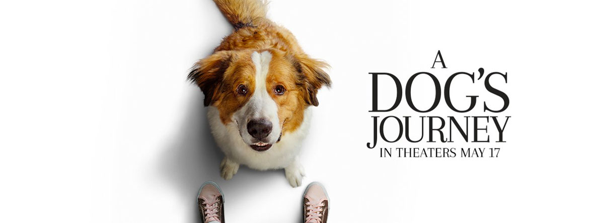 Slider Image for A Dog's Journey