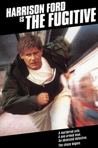 Poster of The Fugitive