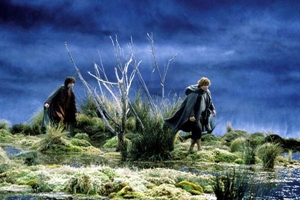 Special Extended Edition The Lord of the Rings: The Two Towers Still 0