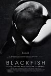Blackfish (2013) Filmmaker Fundraising Encore Poster