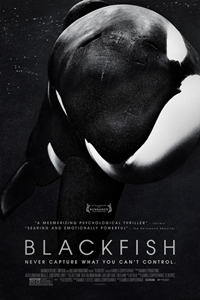 Poster of Blackfish
