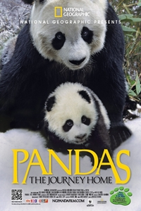 Poster of Pandas: The Journey Home