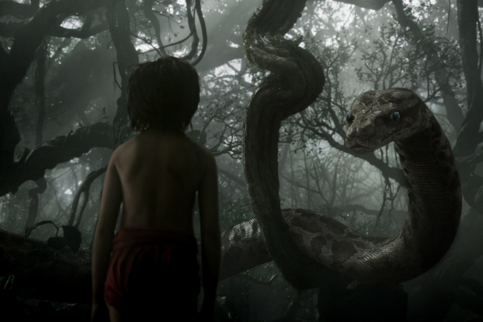 Poster of The Jungle Book