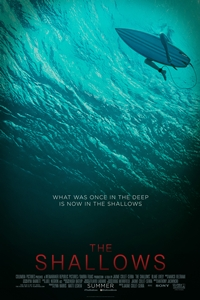 Poster of The Shallows