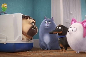 Still #13 forSecret Life of Pets 2, The