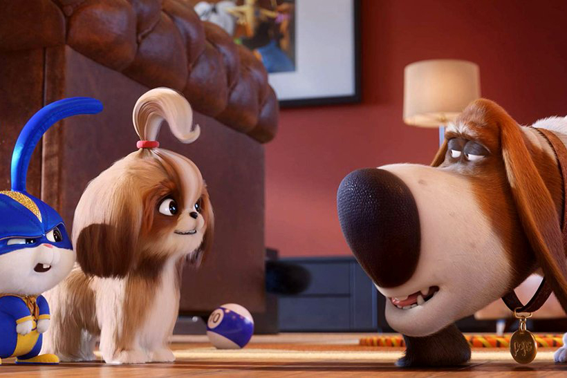 Still #1 for The Secret Life of Pets 2