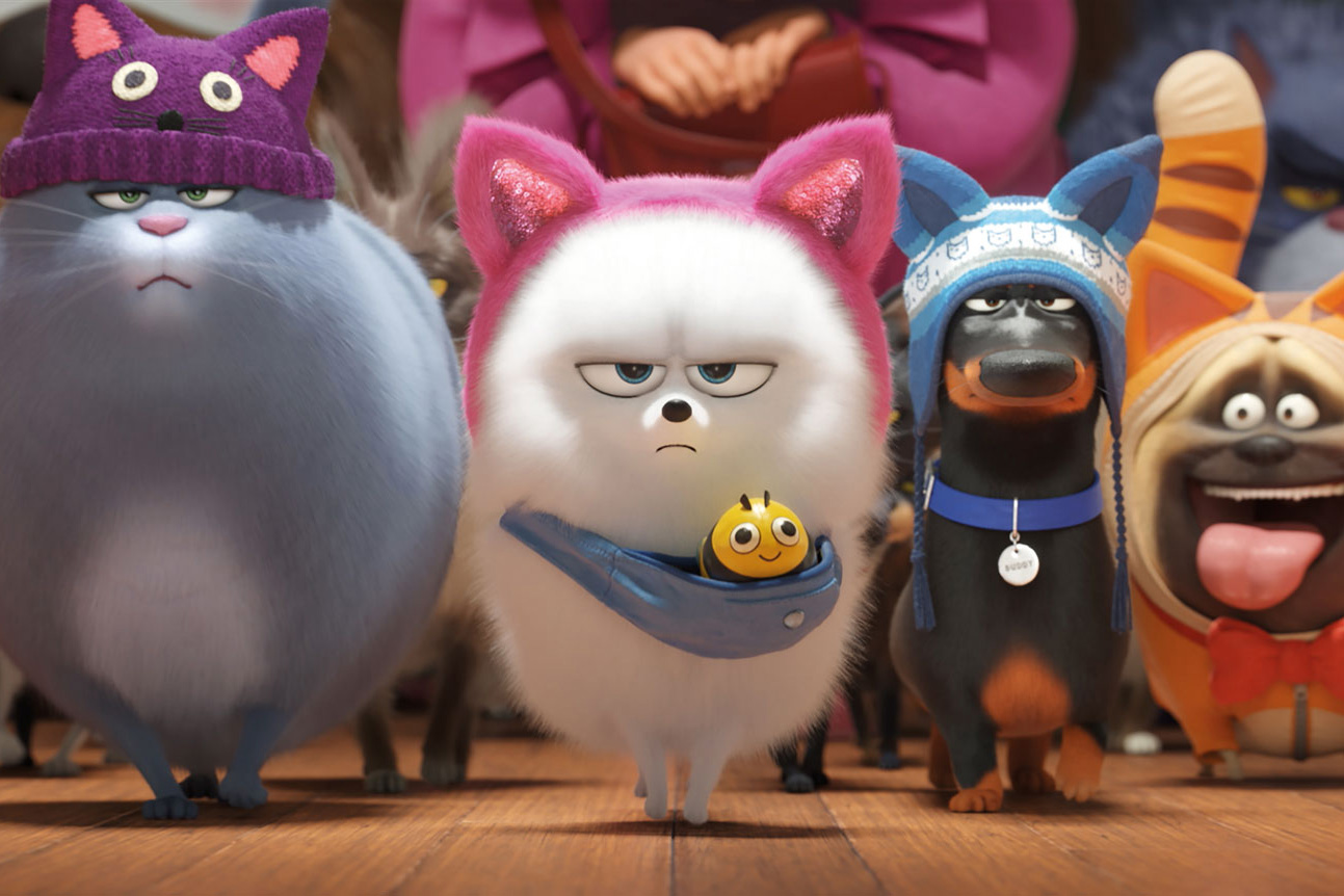 Still #8 for The Secret Life of Pets 2