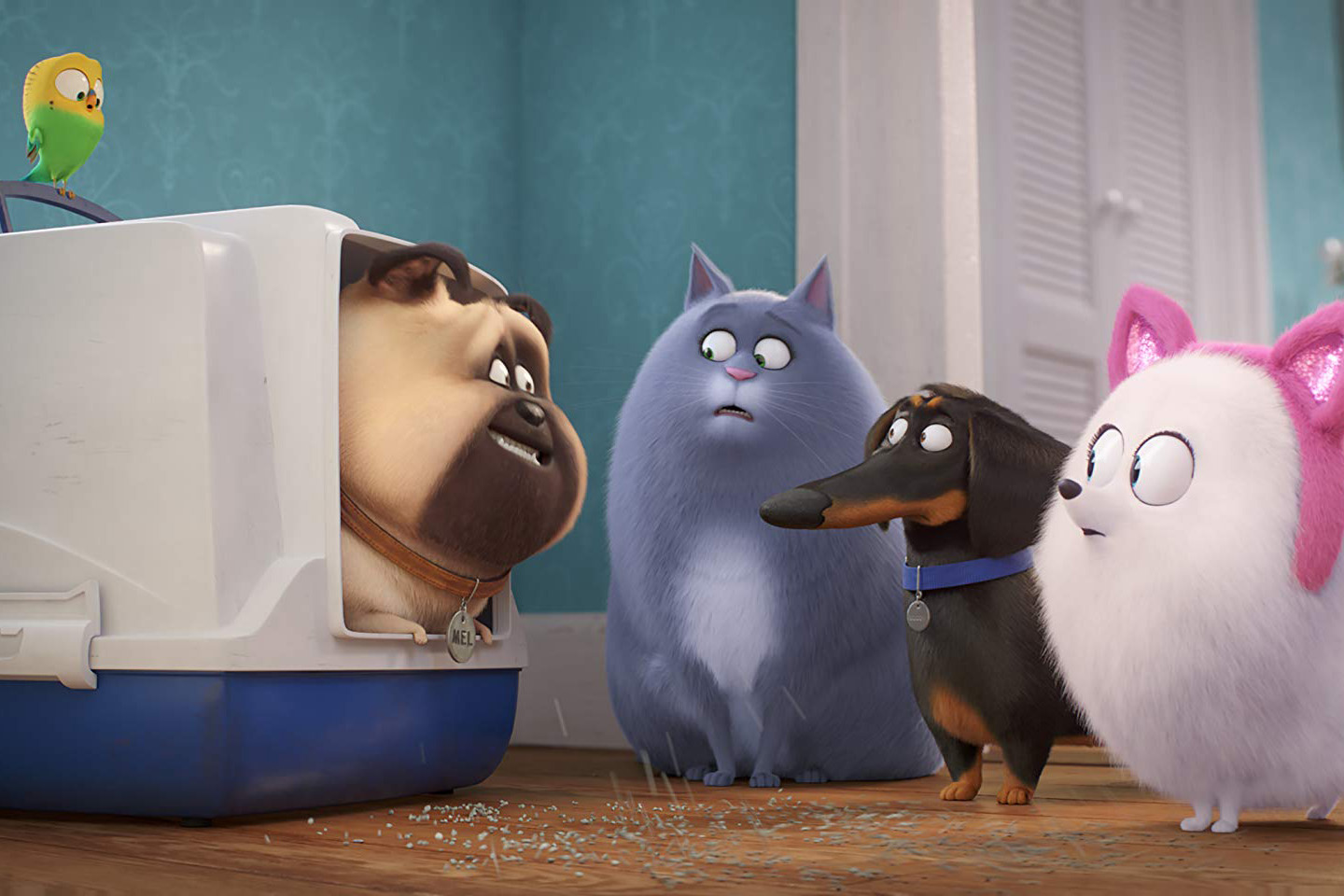Photo 13 for The Secret Life of Pets 2