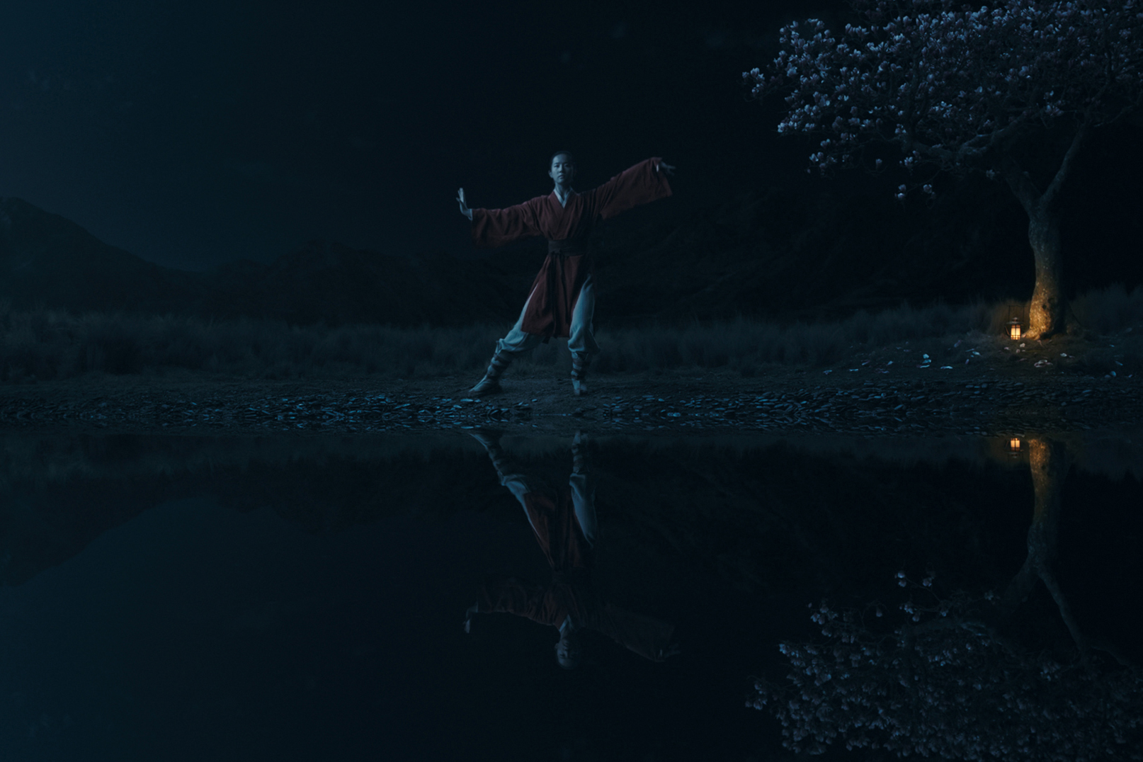 Photo 2 for Mulan in Disney Digital 3D