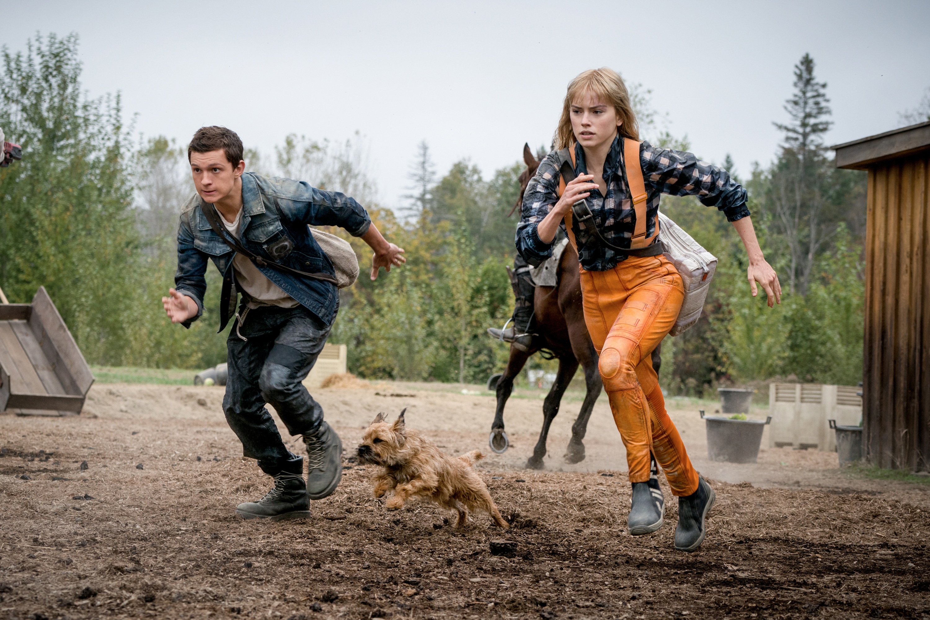 Photo 5 for Chaos Walking