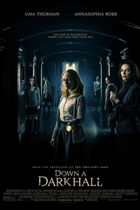 Poster for Down a Dark Hall
