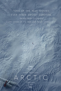 Poster of Arctic