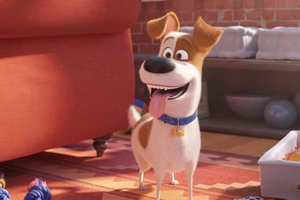 Still #5 forSecret Life of Pets 2 3D, The