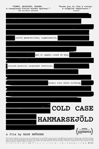 Poster for Cold Case Hammarskjöld