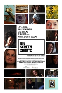 Big Screen Shorts: Showcase One Poster