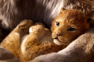 Lion King in RealD 3D, The Still 5