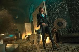 John Wick: Chapter 3 - Parabellum: The IMAX 2D Experience Still 2
