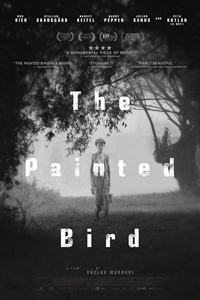 Poster of The Painted Bird