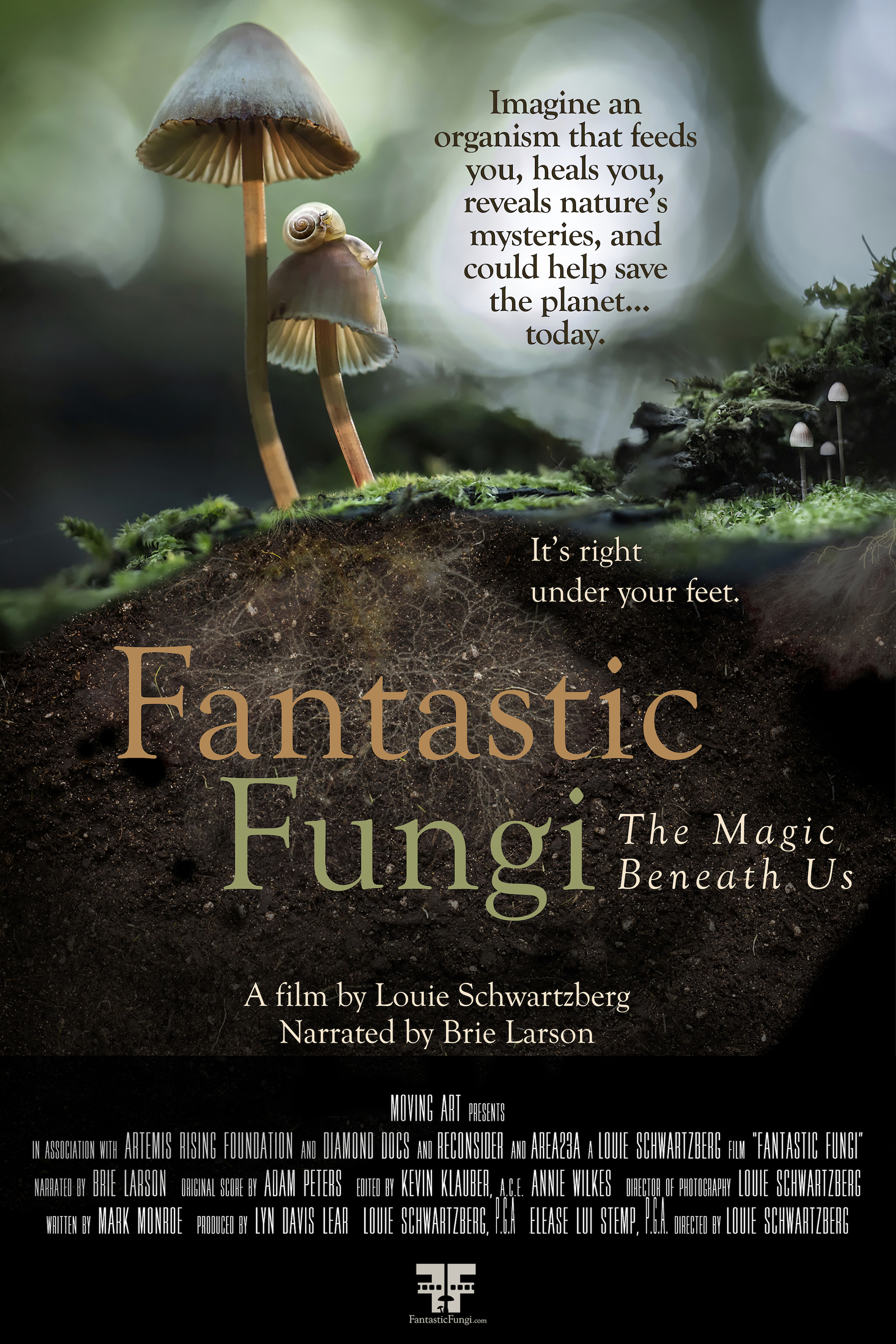 Poster of Fantastic Fungi